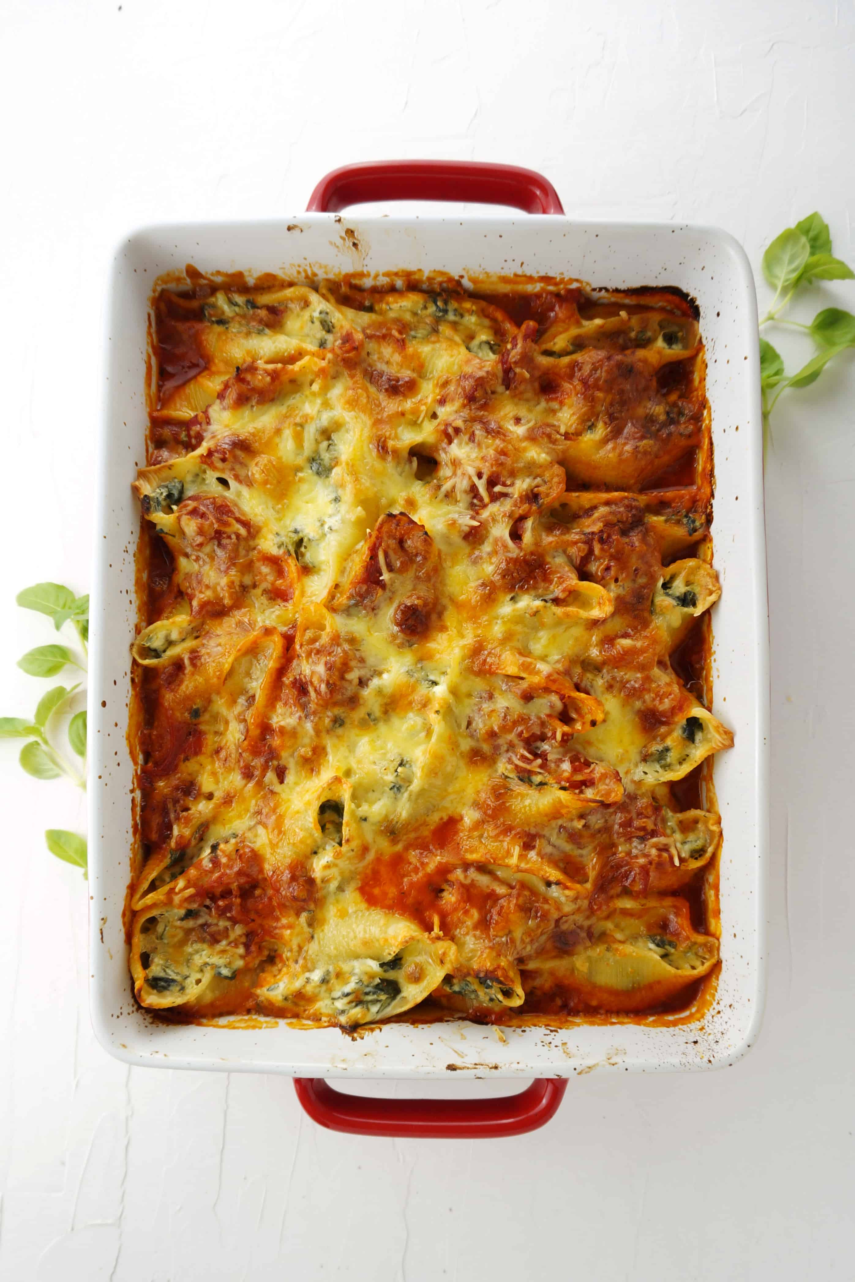 Spinach and Cheese Stuffed Conchiglioni Pasta Bake in baking dish surrounded by fresh basil leaves